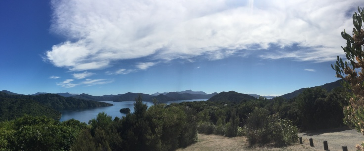 Getting one last hike in before the Ferry back to Wellington